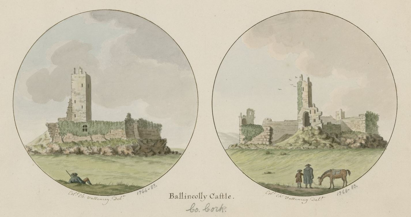 Ballincolly Castle